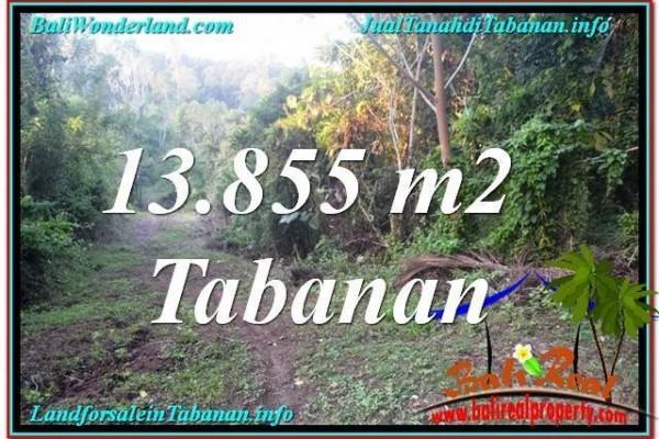 TANAH MURAH di TABANAN JUAL 13,855 m2  View Kebun dan Sungai