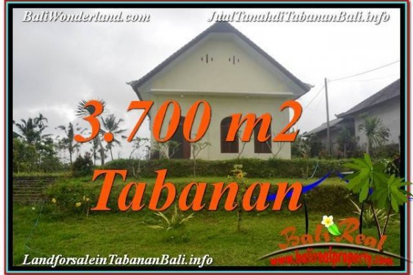 INVESTASI PROPERTI, DIJUAL TANAH di TABANAN TJTB336