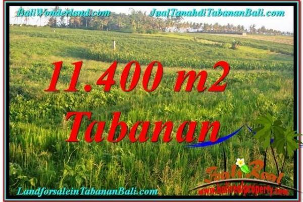 TANAH DIJUAL di TABANAN BALI 114 Are View Laut, Gunung dan sawah