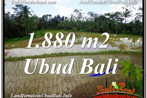TANAH MURAH JUAL di UBUD BALI 1,880 m2  View Sawah dan Gunung
