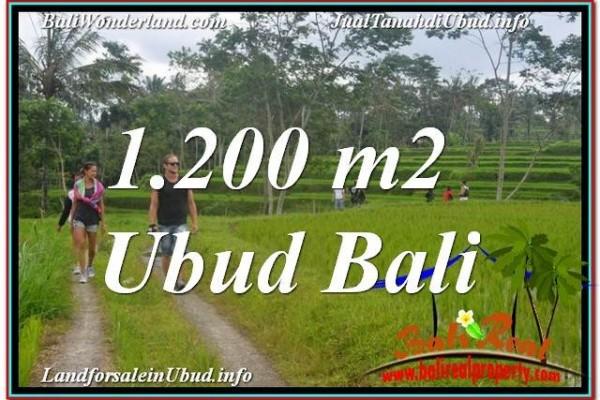 JUAL TANAH di UBUD BALI 1,200 m2  View Sawah