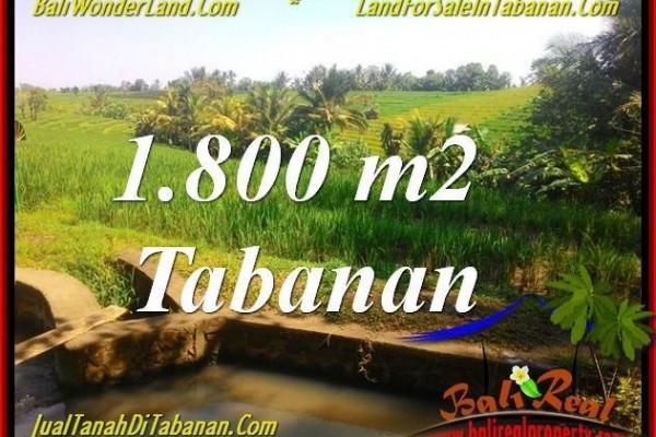 INVESTASI PROPERTY, TANAH DIJUAL MURAH di TABANAN BALI TJTB338