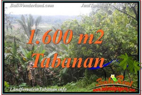 JUAL TANAH di TABANAN 16 Are View Laut dan sawah