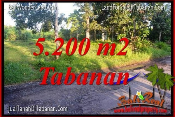 TANAH di TABANAN BALI DIJUAL MURAH 52 Are View Kebun dan Sungai