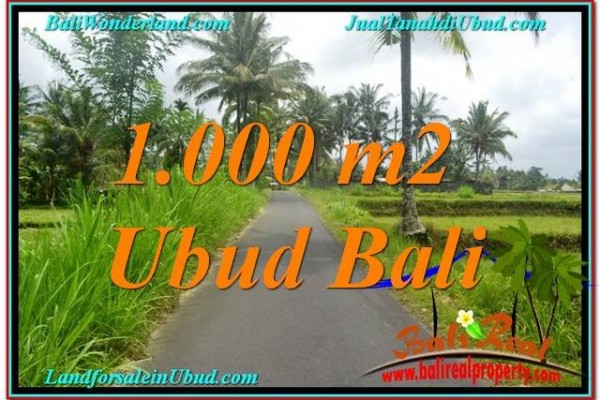 TANAH di UBUD DIJUAL 1,000 m2 di Ubud Tampak Siring