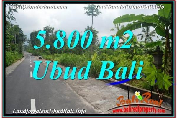 TANAH di UBUD BALI DIJUAL MURAH 58 Are View Hutan dan Sungai