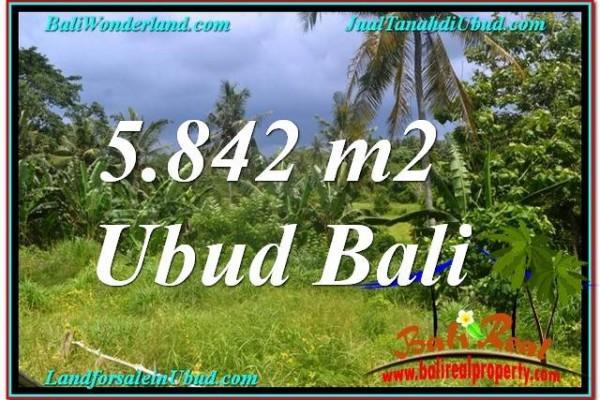 JUAL TANAH di UBUD BALI 5,842 m2 View Tebing dan Sungai, Link. Villa
