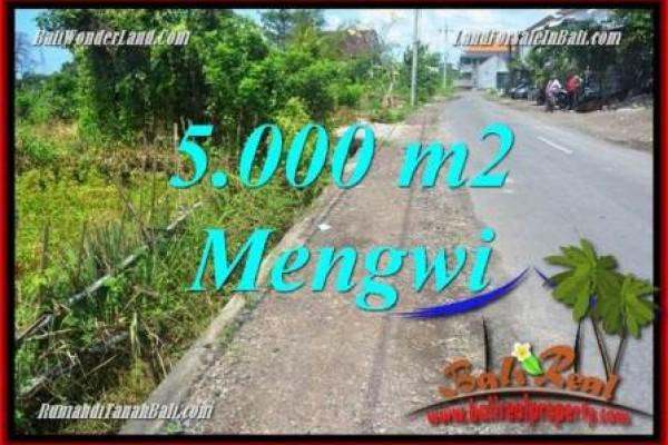TANAH MURAH di Badung Bali DIJUAL 50 Are di Mengwi TJB101