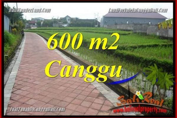 TANAH DIJUAL di CANGGU BALI Untuk INVESTASI TJCG220