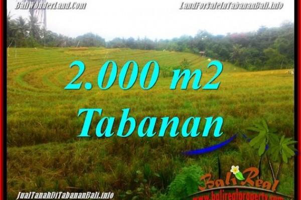 TANAH di TABANAN BALI DIJUAL MURAH TJTB356