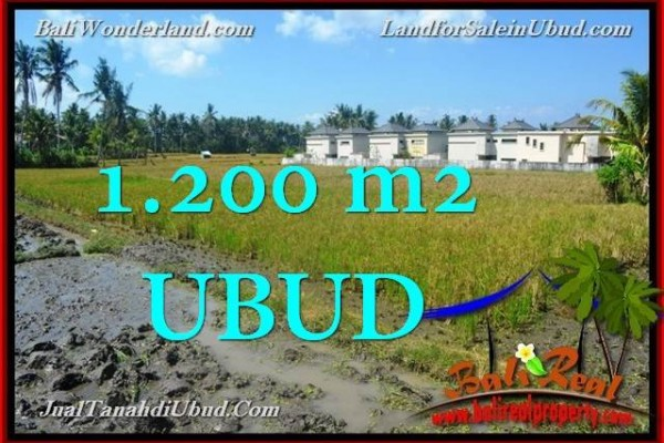 TANAH di UBUD JUAL MURAH 1,200 m2  View Sawah link Villa