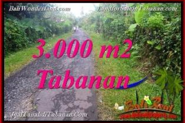 TANAH DIJUAL MURAH di TABANAN BALI 30 Are di Tabanan Selemadeg