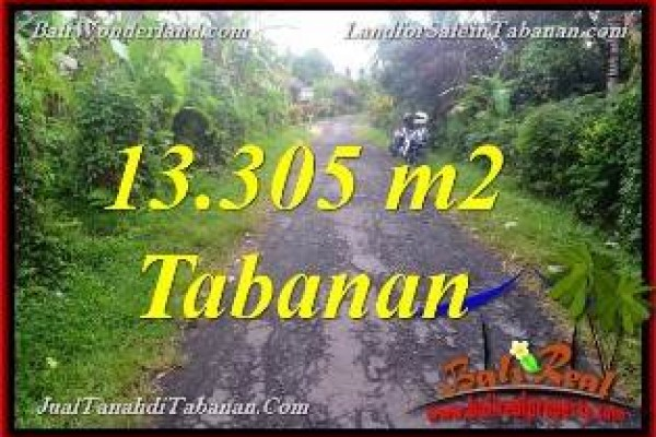 TANAH MURAH DIJUAL di TABANAN BALI 133.05 Are di Tabanan Selemadeg