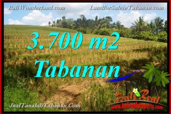 INVESTASI PROPERTY, JUAL TANAH DI TABANAN BALI TJTB377