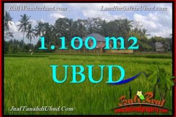 TANAH MURAH DIJUAL di UBUD BALI 11 Are di Ubud Pejeng TJUB651