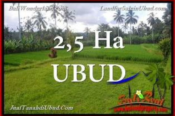 INVESTASI PROPERTI, TANAH DIJUAL MURAH di UBUD PAYANGAN BALI TJUB655