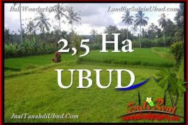 TANAH di UBUD BALI DIJUAL MURAH hanya Rp 85 Juta/Are di Ubud Payangan
