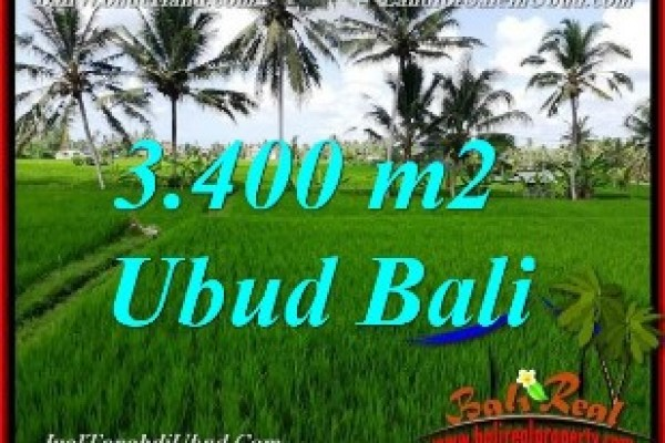 Untuk INVESTASI, TANAH DIJUAL di UBUD BALI TJUB656