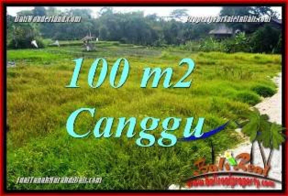 TANAH MURAH JUAL   CANGGU 100 m2  VIEW SAWAH, LINGKUNGAN VILLA