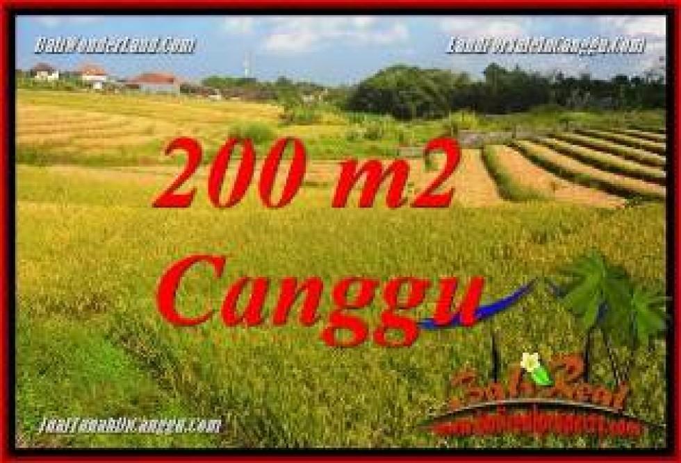 JUAL TANAH di CANGGU BALI 2 Are VIEW SAWAH, LINGKUNGAN VILLA