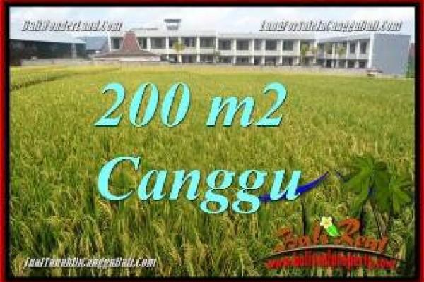 DIJUAL MURAH TANAH di CANGGU 200 m2 di CANGGU BRAWA