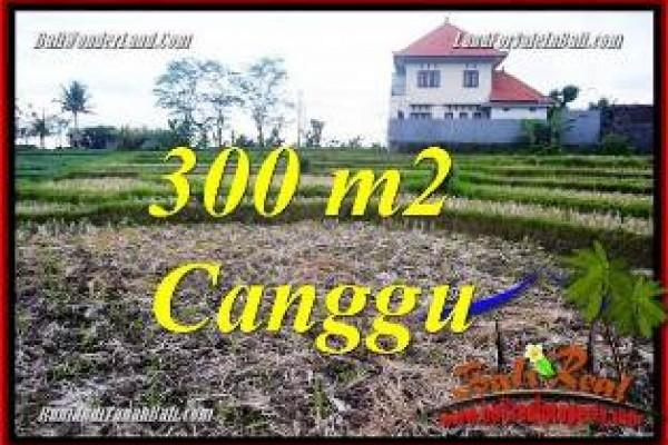 TANAH di CANGGU DIJUAL TJCG230