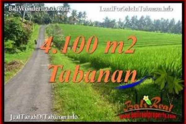 JUAL MURAH TANAH di TABANAN BALI 41 Are di TABANAN SELEMADEG