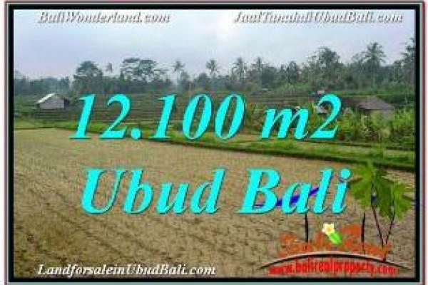 DIJUAL TANAH MURAH di UBUD Untuk INVESTASI TJUB677