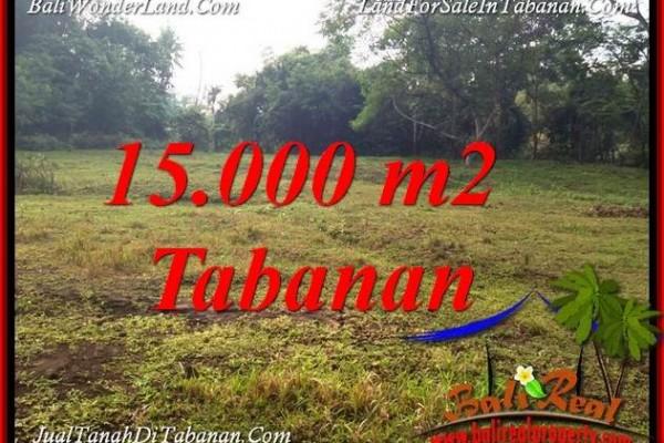 JUAL TANAH DI TABANAN BALI 15,000 m2 VIEW KEBUN DAN SUNGAI