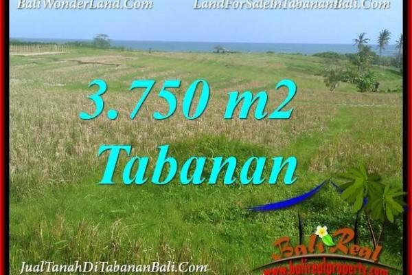 TANAH di TABANAN BALI DIJUAL MURAH 37.5 Are VIEW LAUT, GUNUNG DAN SAWAH