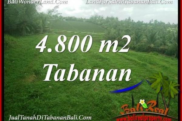 DIJUAL TANAH DI TABANAN BALI 4,800 m2 di TABANAN SELEMADEG