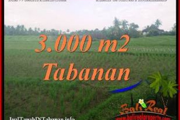 TANAH DIJUAL di TABANAN BALI 3,000 m2  VIEW SAWAH
