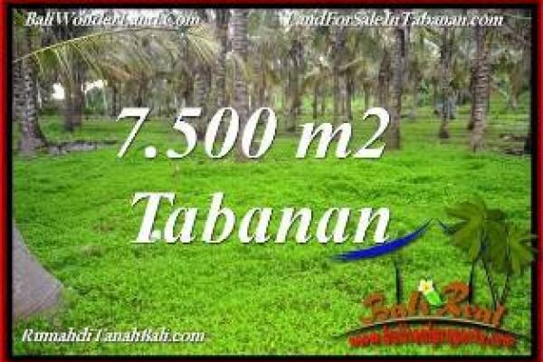 JUAL TANAH DI TABANAN 75 Are VIEW KEBUN, LINGKUNGAN VILLA