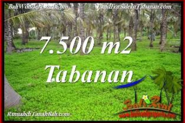 TANAH MURAH di TABANAN 7,500 m2 di TABANAN SELEMADEG