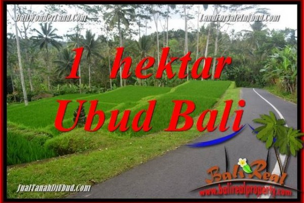 Tanah Dijual di Ubud Bali 100 Are View Sungai dan Tebing