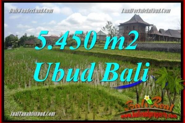 Tanah Dijual di Ubud Bali Untuk Investasi TJUB688