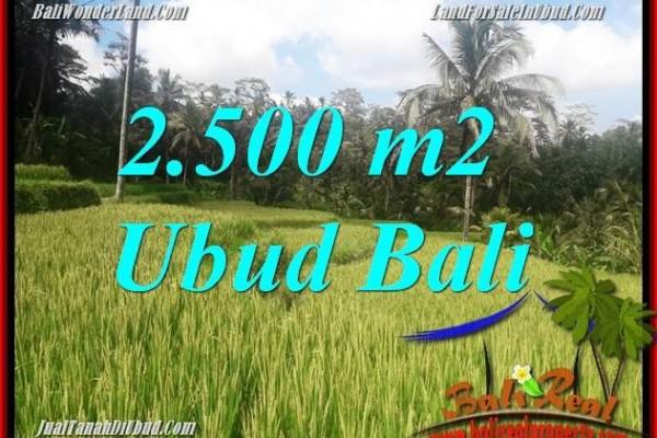 Investasi Properti, Tanah Dijual di Ubud Bali TJUB690