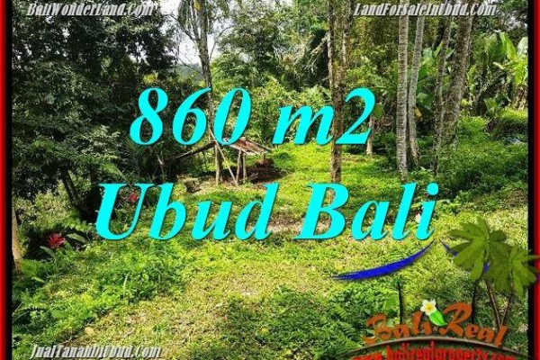 JUAL Tanah di Ubud Bali 860 m2 di Ubud Tegalalang