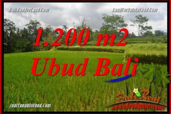 Dijual Tanah Murah di Ubud Bali Untuk Investasi TJUB693
