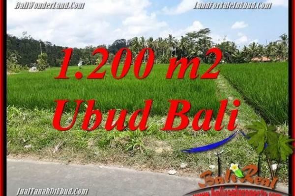 JUAL Murah Tanah di Ubud Bali 1,200 m2  View sawah, lingkungan Villa
