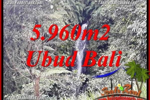 Tanah Murah di Ubud Bali Dijual 5,960 m2 di Ubud Payangan