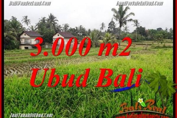 Tanah Dijual di Ubud 3,000 m2  View sawah dan pangkung
