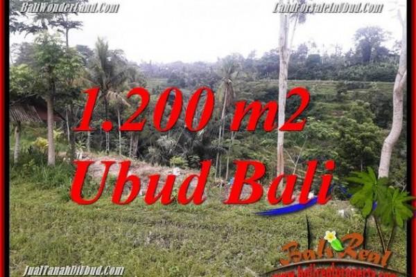 Dijual Tanah di Ubud Untuk Investasi TJUB699