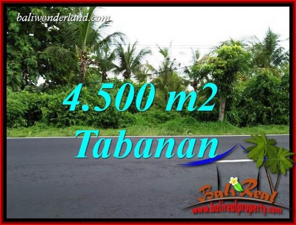 Investasi Properti, Dijual Tanah Murah di Tabanan Bali TJTB395