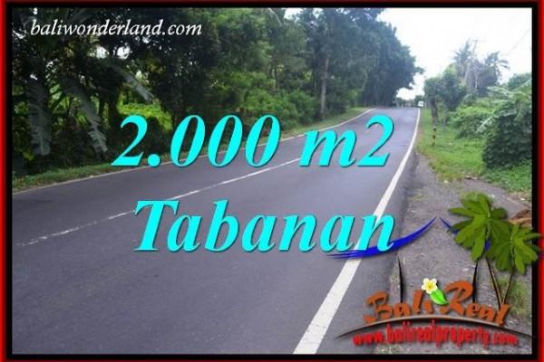 JUAL Murah Tanah di Tabanan Bali Untuk Investasi TJTB398