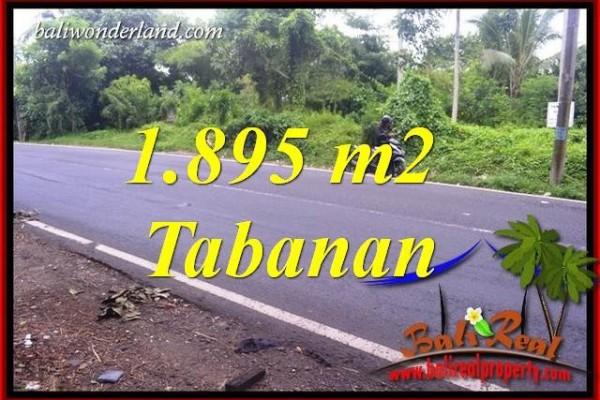 JUAL Murah Tanah di Tabanan Bali 1,895 m2  View Sawah