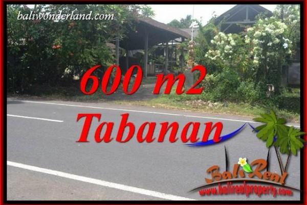 Dijual Murah Tanah di Tabanan Bali Untuk Investasi TJTB400