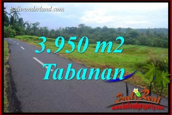 Tanah Murah Dijual di Tabanan 39.5 Are di Tabanan Selemadeg Bali