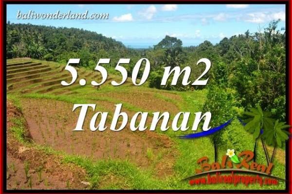 Tanah Murah Dijual di Tabanan Bali TJTB405