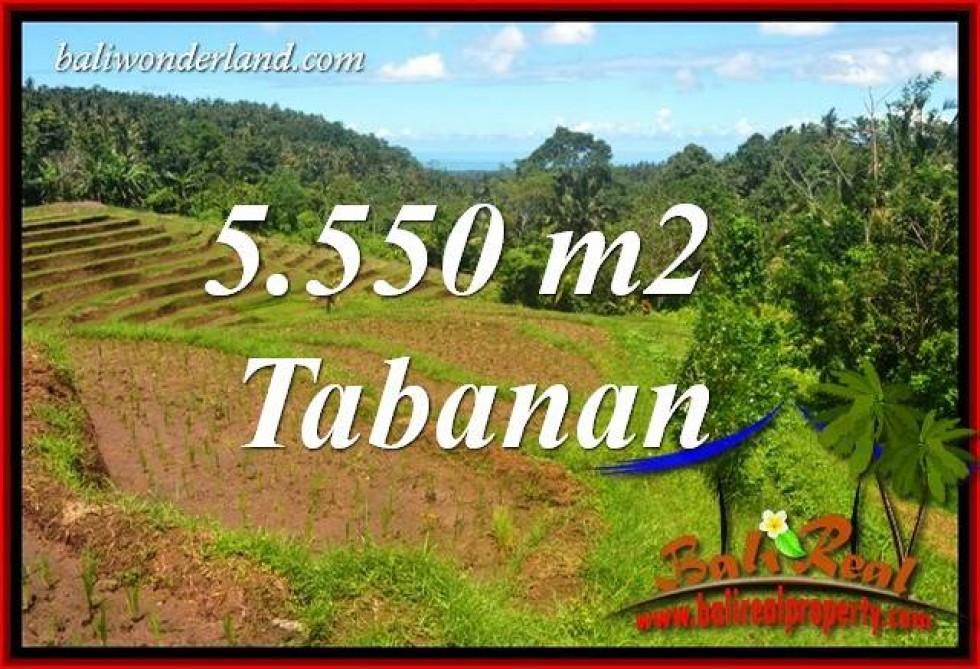 Investasi Properti, Tanah Murah Dijual di Tabanan Bali TJTB405